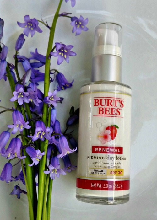 burts bees firming day lotion