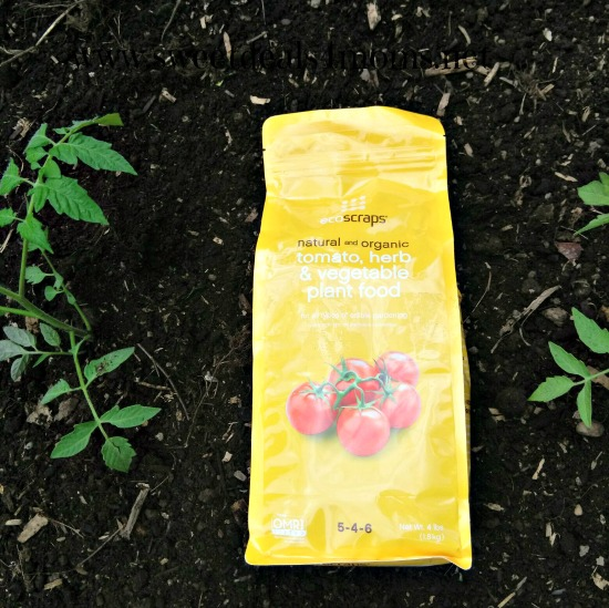 ecoscraps plant food